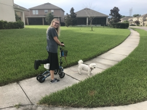 using a Swivelmate Knee Walker from Winter Park Florida August 2018