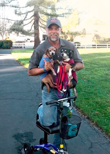 knee scooter and puppies